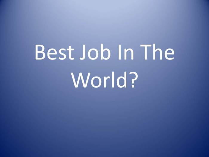 Best Job In TheWorld?